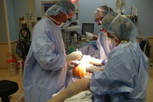 Limb Salvage Surgery